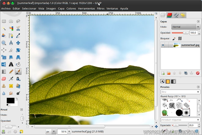 alternativa-photoshop-gimp