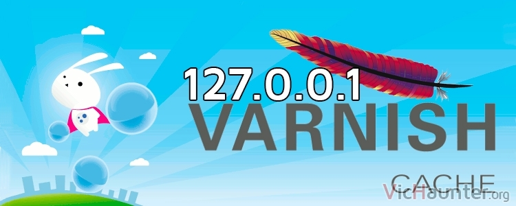 $_SERVER[ 'REMOTE_ADDR' ] y apache log devuelven 127.0.0.1 con varnish