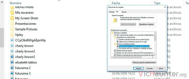 Cómo mostrar archivos ocultos en Windows