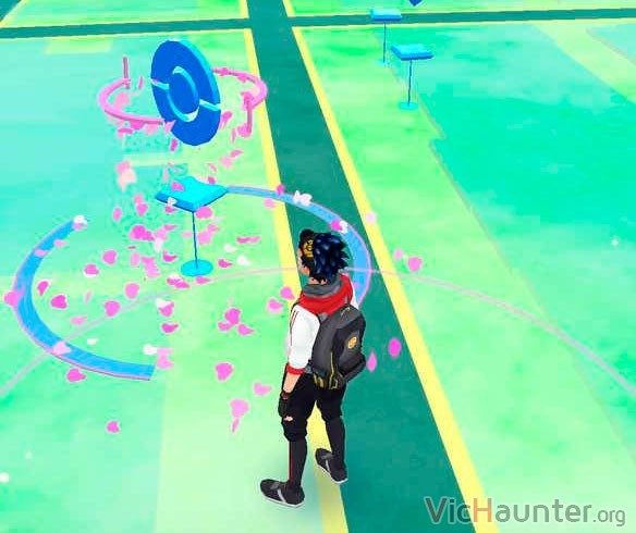 alta-concentracion-pokemons-go-hojas-rosas