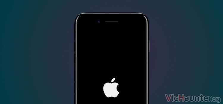 Reiniciar iphone 7 plus