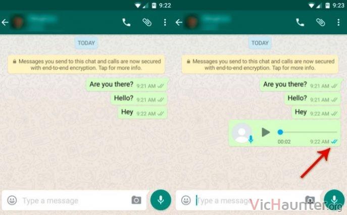 whatsapp-doble-check-mensaje-voz