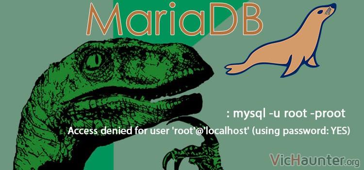 Cómo solucionar acceso root mariadb