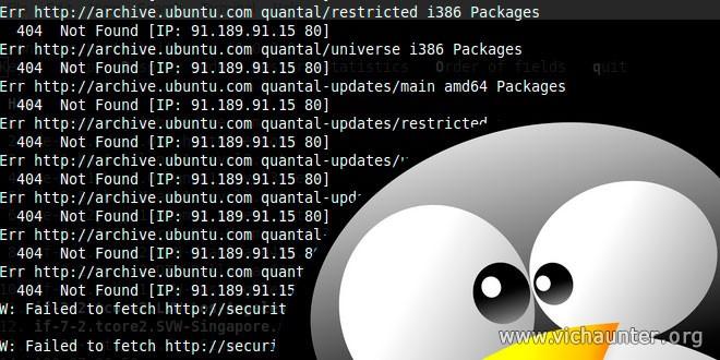 Agregar dns a linux con error apt-get 404