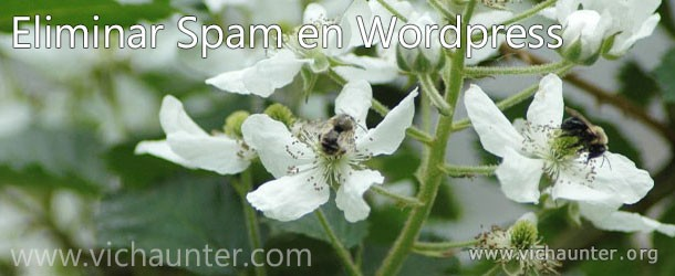 eliminar-spam-wordpress-plugin-spammer-block